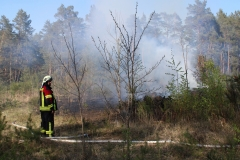 2020-04-27_waldbrand_welzow_flugplatz_23